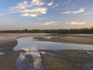 Cimarron River Cuts Through the Sandy Landscape, Oklahoma by Tim Fitzharris