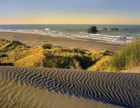 tim-fitzharris-coastline-pistol-river-beach-oregon