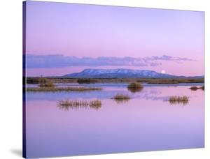 Full moon rising over Sangre de Cristo Mountain Range, Alamosa National Wildlife Refuge, Colorado by Tim Fitzharris