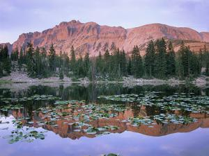 Hayden Peak and Butterfly Lake, Uinta Range, Utah by Tim Fitzharris