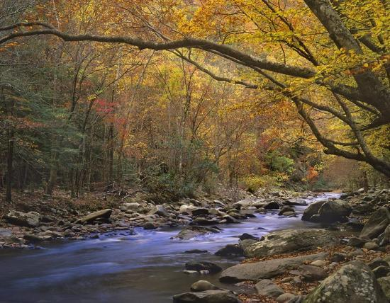 tim-fitzharris-little-river-flowing-through-autumn-forest-great-smoky-mountains-national-park-tennessee