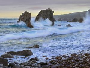 Cove and Seastacks Near Garrapata State, Beach Big Sur, California by Tim Fitzharris/Minden Pictures