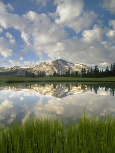 Mammoth Peak and Scattered Clouds Reflected in Lake, Yosemite National Park, California by Tim Fitzharris/Minden Pictures