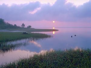Marsh at Sunrise over Eagle Bay, St Joseph Peninsula, Florida by Tim Fitzharris/Minden Pictures