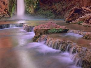 Mooney Falls Cascading into Havasu Creek, Grand Canyon National Park, Arizona by Tim Fitzharris/Minden Pictures