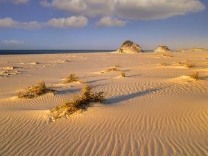 Sand Dunes at the Gulf Islands National Seashore, Florida by Tim Fitzharris/Minden Pictures