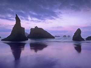 Sea Stacks at Dusk Along Bandon Beach, Oregon by Tim Fitzharris/Minden Pictures