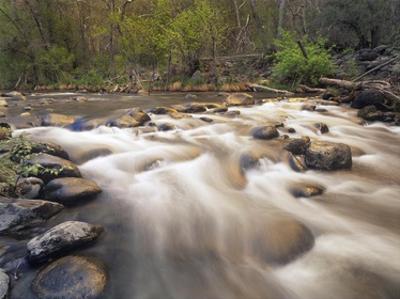 Oak Creek at Grasshopper Point, Sedona, Arizona by Tim Fitzharris