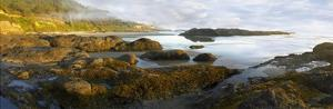 Panorama of Neptune Beach with exposed tide pools at low tide, Oregon by Tim Fitzharris
