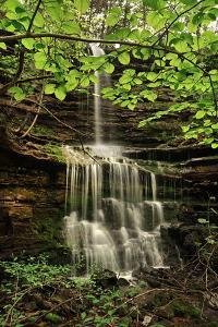 Pearly Creek Falls, Buffalo River Trail, Arkansas by Tim Fitzharris