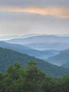 Pisgah National Forest from Blue Ridge Parkway, North Carolina, Usa by Tim Fitzharris