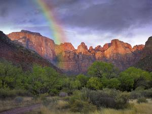 Rainbow at Towers of the Virgin, Zion National Park, Utah by Tim Fitzharris