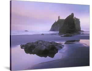Ruby Beach with seastacks and boulders, Olympic National Park, Washington by Tim Fitzharris