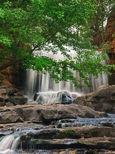 Tanyard Creek Falls cascading over rocks, Arkansas, USA by Tim Fitzharris