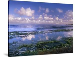 Tidepools and waves at Ho'okipa Beach, Maui, Hawaii by Tim Fitzharris
