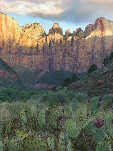 Towers of the Virgin, Zion National Park, Utah by Tim Fitzharris