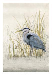 Heron Sanctuary II by Tim
