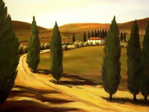 Along a Tuscan Road by Tim Howe