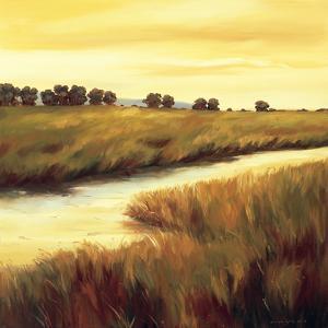 Golden Stream by Tim Howe