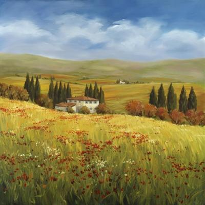 Lo Splendor De La Toscana by Tim Howe