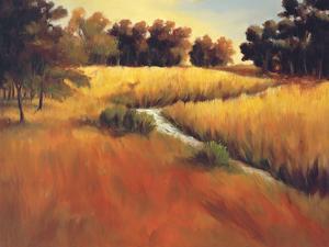 Meandering Stream by Tim Howe