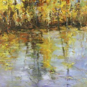Reflections of a Changing Season by Tim Howe