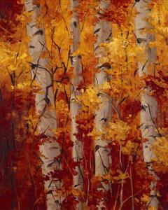 The Splender of Autumn by Tim Howe