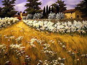 Villa en Umbria by Tim Howe