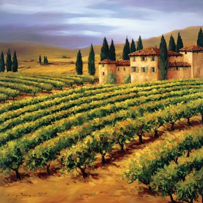 Villa in the Vinyards of Tuscany by Tim Howe