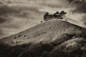 Colmers Hill by Tim Kahane
