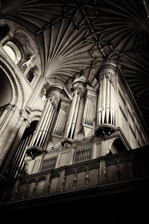 Norwich Cathedral Organ by Tim Kahane