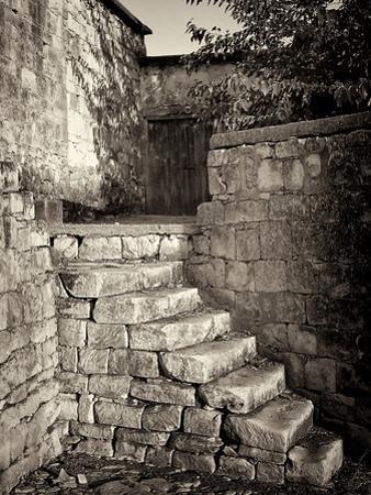 Old Stone Steps by Tim Kahane