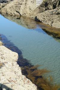 Pond Created in Between Rocks by Tim Kahane