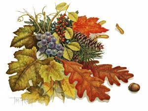 Autumn by Tim Knepp