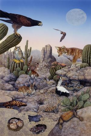 Desert Scene with Falcon and Cactus, a Fox and Other Desert Animals