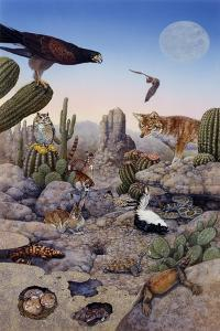 Desert Scene with Falcon and Cactus, a Fox and Other Desert Animals by Tim Knepp