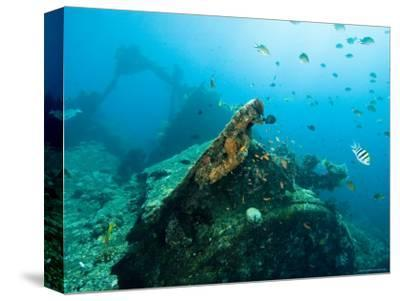 Diving on Wreck of Liberty, An American Cargo Ship Sunk in 1942, Bali, Indonesia