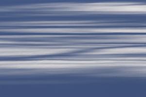 Morning light casts long shadows across fresh snow.  Heywood's Meadow, near Walden Pond. by Tim Laman