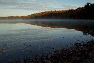 Morning mist rises from Walden Pond in the fall.