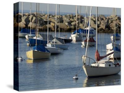 Sailboats in Rockport Harbor, Ma