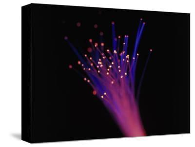 Close-up of Fiber Optic Cable