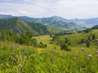 Mountains, Flower-Filled Meadows, and Farmland of the Altai Republic at Altayskiy