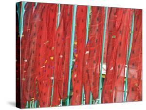 Red Prayer Flags on Green Flagpoles at Pemayangtse Monastery by Tim Makins
