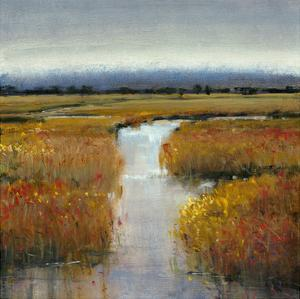 Marsh Land II by Tim