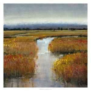 Marsh Land II by Tim