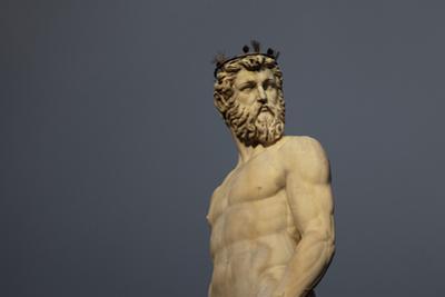 Statue of Neptune, in the Fountain of Neptune, Piazza Della Signoria, Florence by Tim Mitchell