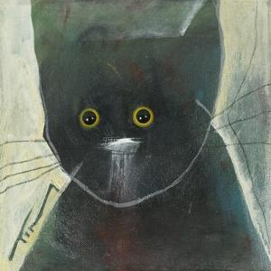 Cats Eyes by Tim Nyberg