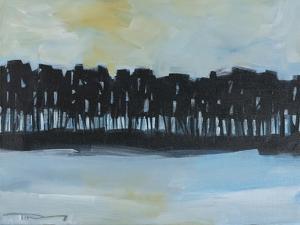 Early Winter Treeline by Tim Nyberg