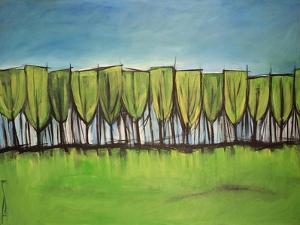Evangelist Trees by Tim Nyberg