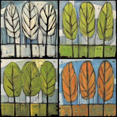 Four Seasons Tree Series Square by Tim Nyberg